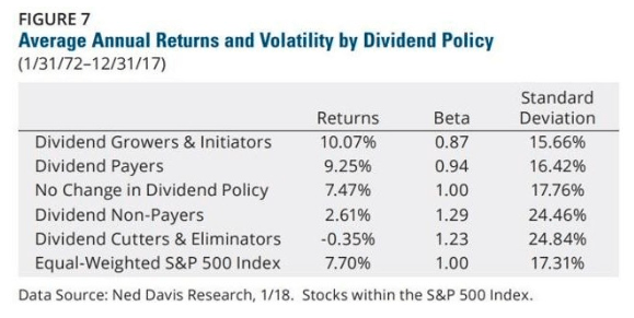 average annual returns dividend policy volatility
