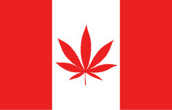 : CGC | Canopy Growth Corporation  News, Ratings, and Charts