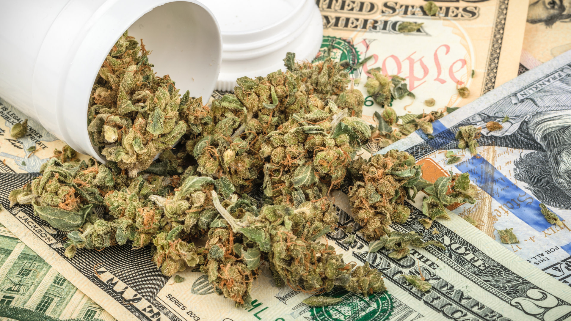 : sndl | Sundial Growers Inc. News, Ratings, and Charts