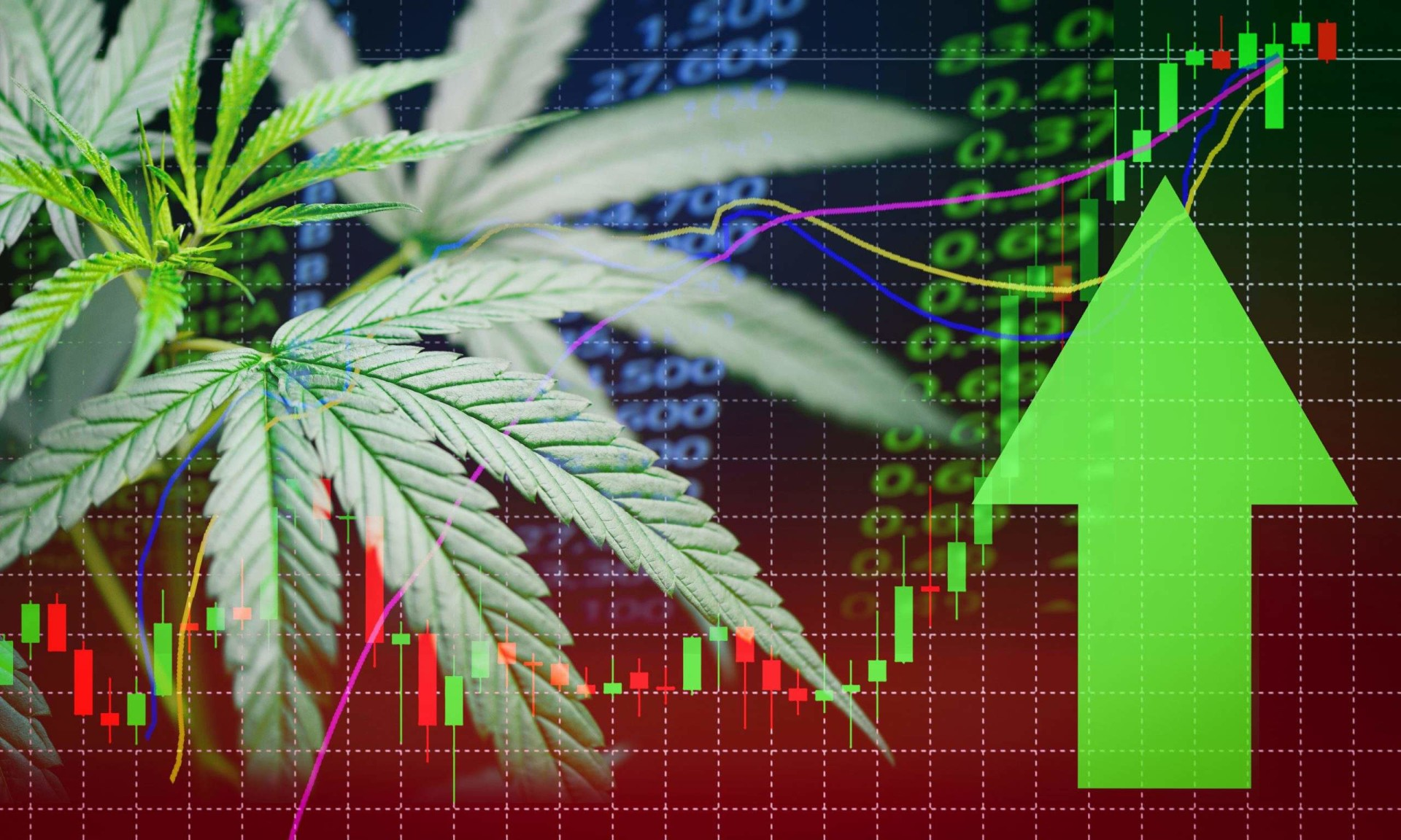 : APHA | Aphria Inc. Common Shares News, Ratings, and Charts